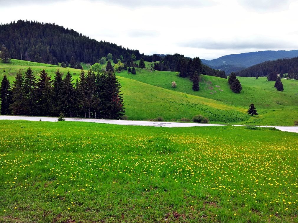 Планинска прохлада през горещите летни дни