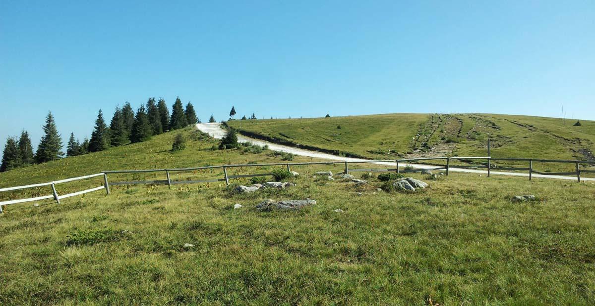 Екскурзии в Родопите